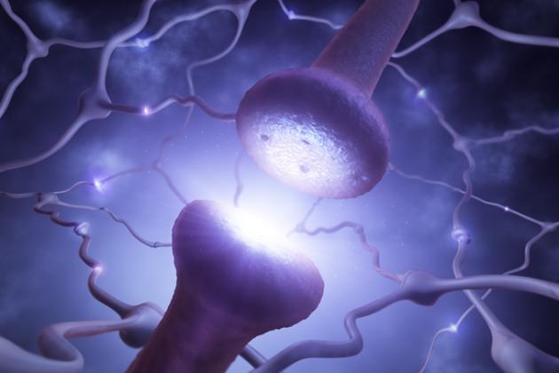 Cientistas descobrem novas possibilidades para o tratamento contra o ...